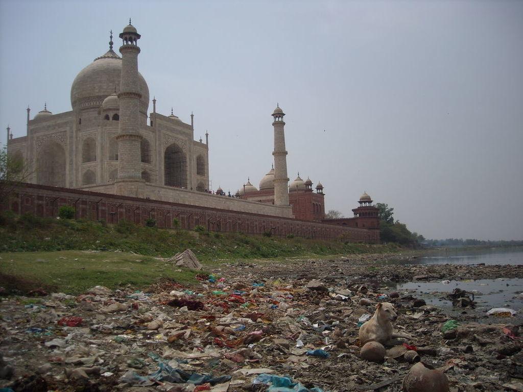 Resultado de imagem para as riquezas do taj mahal