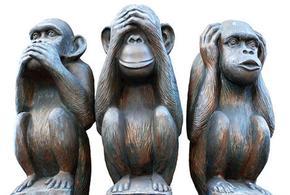 Macacos naovejo naofalo naoescuto