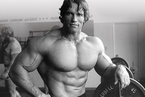 Arnold schwarzenegger fisiculturismo jpg
