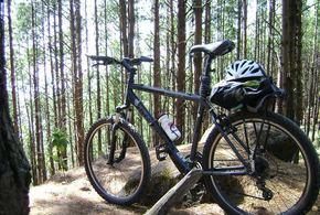 Bicicleta 01 jpg