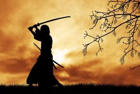 233512 grafika zachod slonca drzewo samuraj jpg